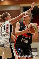 Basket Willebroek vs Dynamite Deerlijk
